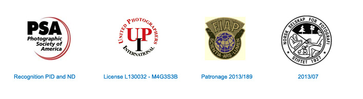 FIAP: 2013/189, UPI: Licence L130032-M4G3S4B, PSA: Recognition PID and ND